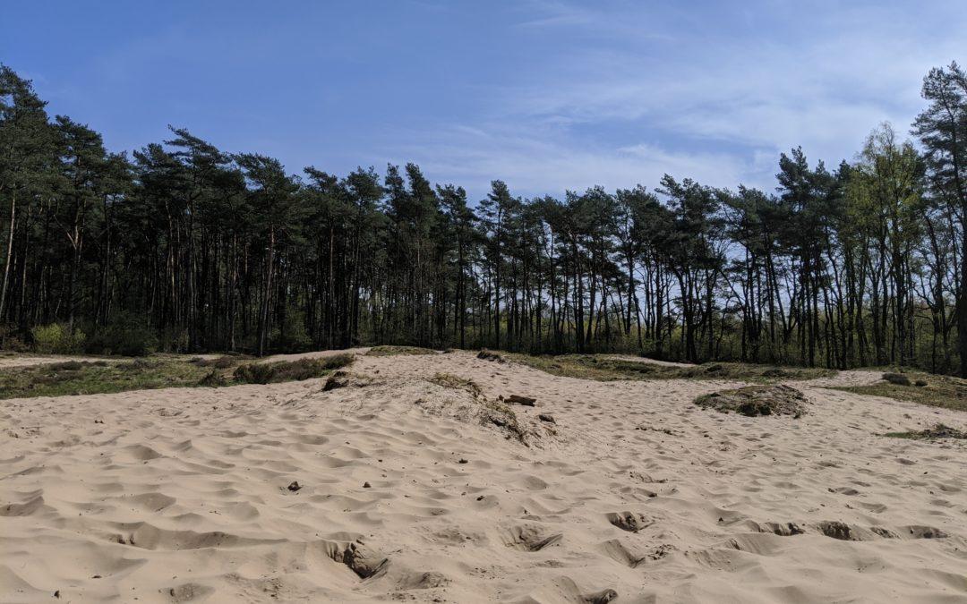 Dünen ohne Meer? Entdeckt die Holmer Sandberge!